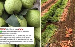 Ấm lòng cảnh dân tình rần rần giải cứu nông sản giúp bà con Hải Dương: nhìn giá bán mà ai cũng thương người nông dân