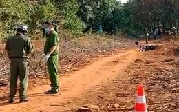 Điều tra nghi án nữ công nhân 18 tuổi bị sát hại trong lô cao su ở Bình Phước