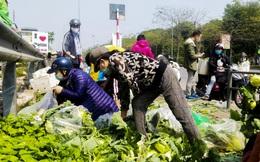 Hà Nội: 15 tấn rau sạch từ vùng dịch Hải Dương được bán sạch trong buổi sáng