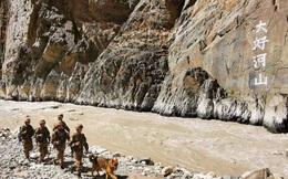 Cư dân mạng Ấn Độ nghi ngờ video 'quân đội Trung - Ấn hỗn chiến trên biên giới'