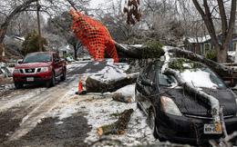 Từ trên giường ra ngoài vườn đến trong ô tô: Người Mỹ chết cóng hàng loạt vì thảm họa rét cực độ