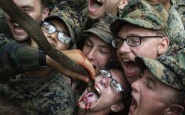 Nguy cơ xuất hiện đại dịch mới từ việc uống máu rắn, ăn bọ cạp của binh sĩ