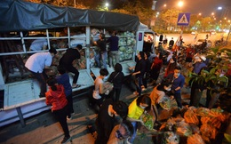 Cuộc giải cứu nông sản Hải Dương lúc nửa đêm tại Hà Nội, nhiều người mua cả tạ hàng