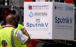 Chuyên gia châu Âu: Vaccine Sputnik V giống khẩu AK huyền thoại của Nga - Đơn giản, đáng tin, hiệu quả