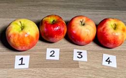 """Thách thức thị giác 3 giây: Đố bạn đâu là quả táo giả đang """"trà trộn"""" trong ảnh?"""