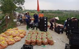 Tránh lợi dụng 'giải cứu' ép giá nông dân, Hải Dương công bố giá bán nông sản