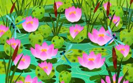 Thách thức thị giác 3 giây: Đố bạn tìm ra con ếch xanh trong đầm sen nở rộ
