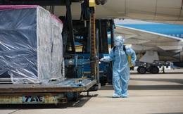 [ẢNH] Cận cảnh quy trình nghiêm ngặt vận chuyển 117.000 liều vắc xin Covid-19 đầu tiên từ máy bay ở Tân Sơn Nhất