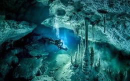 Hình ảnh ngoạn mục về hang động 'ma thuật' dưới nước sâu trong rừng Mexico