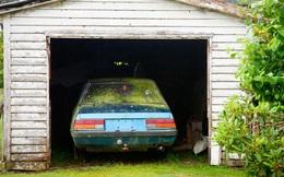 Cách loại bỏ hoàn toàn nấm mốc khỏi nội thất cho ô tô của bạn
