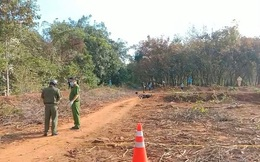 Vụ cô gái tử vong với vết thương trên ngực tại Bình Phước: Hung thủ là bạn trai của nạn nhân