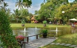 Loạt dự án lớn tại Bình Định vào tay các đại gia BĐS