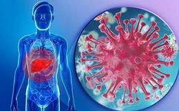 Phòng ngừa bệnh thường gặp ở gan