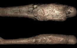 """Mở quan tài Ai Cập 3.000 năm tuổi, phát hiện chi tiết kỳ lạ và rùng rợn về """"kén xác ướp"""""""