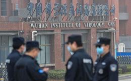 """Đoàn WHO """"mục sở thị"""" phòng thí nghiệm Vũ Hán: Chuyên gia đánh giá về khả năng COVID-19 """"rò rỉ"""""""