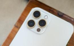 iPhone 13 sẽ được nâng cấp camera góc siêu rộng, chụp thiếu sáng tốt hơn