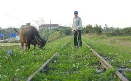 Tuyến đường sắt bị 'bỏ quên' gần thập kỷ không có tàu chạy nhưng vẫn tiêu tốn tiền tỷ bảo vệ