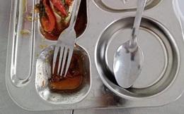 Có gián trong suất ăn trưa của học sinh ở một trường quận 8, TP HCM