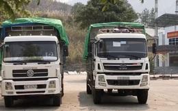 """Tổng cục Hải quan yêu cầu làm rõ vụ 2 xe tải """"vô chủ"""" ở cửa khẩu Ma Lù Thàng"""