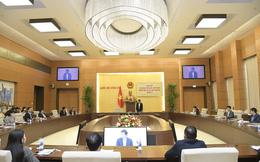 86 người được giới thiệu ứng cử ĐBQH chuyên trách ở Trung ương