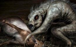 Bí ẩn về 'quái vật' hút cạn máu 50 con vật mỗi đêm mà không để lại bất kỳ dấu vết nào