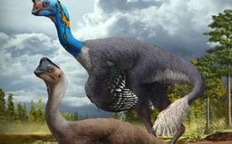 Phát hiện hóa thạch khủng long chết trong khi đang ấp trứng với những con non đang nở