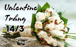 Những lời chúc Valentine trắng hay và ý nghĩa dành cho người yêu