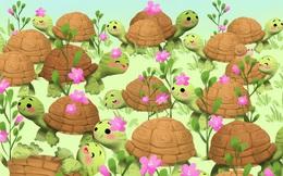 """Thách thức thị giác 10 giây: Hoa mắt tìm con ốc sên chen trong đám """"cụ rùa"""""""