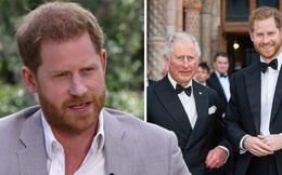 Sự thật chuyện Harry trách móc gia đình cắt hết tài chính, người tổn thương nhiều nhất là Thái tử Charles