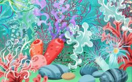 Thách thức thị giác 10 giây: Lặn sâu xuống đại dương săm soi tìm con sứa trong suốt đi lạc