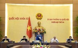 Dự kiến bầu Chủ tịch nước, Thủ tướng Chính phủ vào đầu tháng 4