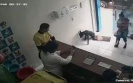 Ngỡ ngàng chú chó hoang tự biết vào phòng khám thú y khi bị thương