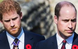 Sau lùm xùm, Hoàng tử William và Harry sẽ sớm tái ngộ vì lý do đặc biệt, cũng chính là thứ duy nhất có thể hàn gắn tình anh em