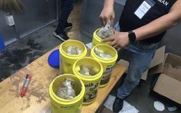 Phát hiện gần 6 kg nghi ma túy tại sân bay Tân Sơn Nhất