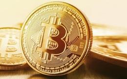 Mới phá kỷ lục hồi tuần trước, Bitcoin lại 'rơi thẳng đứng'