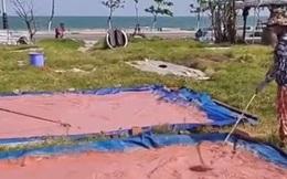 Tò mò khi thấy những thửa ruộng lạ màu hồng như đất sét ngay bên bờ biển, ai cũng 'té ngửa' khi biết đó là một món đặc sản khá ngon