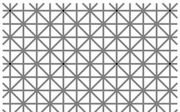 Thách thức thị giác 10 giây: Bạn nhìn thấy bao nhiêu chấm đen trong ảnh?