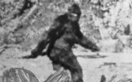 Một nhân chứng cho biết mình đã gặp sinh vật huyền bí giống như 'người rừng', đáng sợ hơn nó còn có khả năng xuyên không!