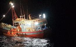 Chủ tàu cá bị tịch thu tàu và phạt hơn 1 tỉ đồng
