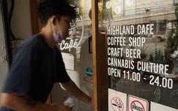 Thái Lan hy vọng ngành công nghiệp cần sa cứu nền kinh tế trong dịch COVID-19