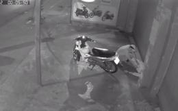 [Clip] Kẻ gian trộm xe, ĐTDT của thanh niên nhậu say ngủ trước cửa nhà ở Sài Gòn