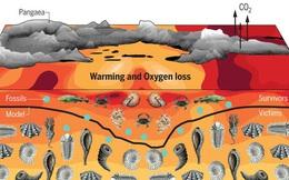 Phải mất 10 triệu năm sự sống trên Trái Đất mới có thể phục hồi sau sự kiện 'The Great Dying'