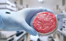 Liệu thịt nhân tạo có đủ sức thay thế hoàn toàn thịt thật trong tương lai?