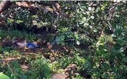 Con gái tá hỏa khi phát hiện mẹ tử vong trong tình trạng phân hủy