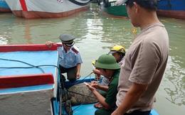 Bình Định: Con vích biển quý hiếm nặng 120kg bất ngờ dính lưới ngư phủ trên đầm Đề Gi