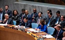 Việt Nam lần thứ hai đảm nhận vai trò chủ tịch Hội đồng Bảo an Liên Hợp Quốc
