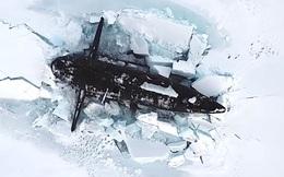 Ba tàu ngầm hạt nhân Nga đồng loạt nổi lên ở Bắc Cực: TT Putin nhận được báo cáo gì?
