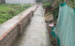 """Sự thật thông tin người dân Hải Phòng xây tường chia đôi đường đi vì """"sốt đất"""""""