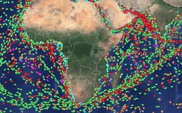 Không chỉ chuyện 10 tỷ USD 'bốc hơi' mỗi ngày, mà tất cả hải trình trên thế giới đều không 'lọt khỏi tầm mắt' trang web này