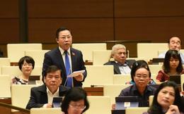 """Đại biểu Lưu Bình Nhưỡng: """"Tôi coi sông Hồng là động mạch của Quốc gia"""""""